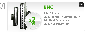 $2.95 - BNC - 1 BNC process, 2 connections - 40MB space