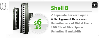$6.95 - Shell B - 2 server logins - 4 background processes - 100MB space