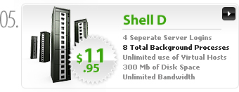 $11.95 - Shell D - 4 separate server logins - 8 background processes - 300MB space