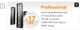 $17.95 - Professional Webhosting - www.yourdomain.com - Cpanel - 25 Email Accounts - 25 MySQL Databases - 40GB transfer - 1000MB Disk Space - FREE Domain Registration